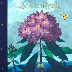 BoscoReale