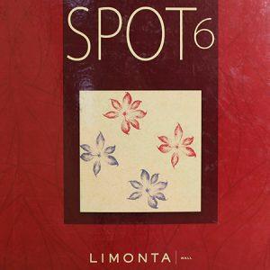 Spot6